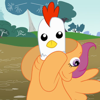 Scootaloo Is A Chicken Gyropedia The Ponychan Wiki Fandom Scootaloo is an anthropomorphic pony with orange fur and short, magenta/purple hair. scootaloo is a chicken gyropedia the