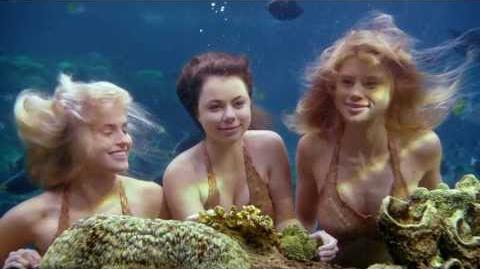 Mako Mermaids Music Video Trailer