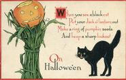 Black Cat Vintage Halloween Postcard