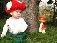 Mushroom Shots 018 - Copy.JPG
