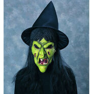 Rubie's Costume Co Witch Mask with Hat & Hair Costume