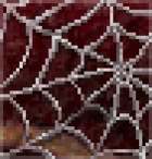 Background spider web.png