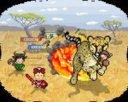 Cheetah promotional art