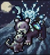 CC Winter Lacefacewolf3