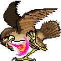 Quest falcon.png