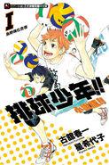 Volleyball Boy!! Novel Version!!