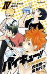 Haikyū!! Shōsetsuban!! 4: Everyone's Summer Vacation