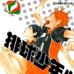 Volleyball Boy 1 cover.jpg