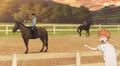Shiratorizawa (horse)