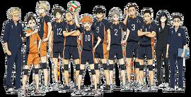 Karasuno equipe.png
