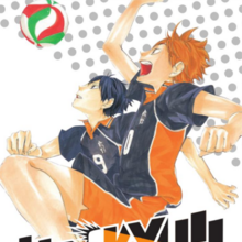 Haikyu 1 DE cover.png