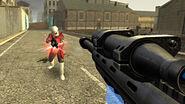 Survivor sniper rifle