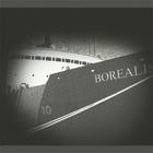 Borealis image 001