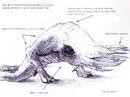 Bullsquid concept