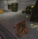 Bullsquid headcrab attack2