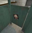 Eggeyes toilets