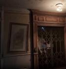 Lightning dog in an elevator shaft