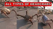 Half Life Alyx - All Types of HEADCRABS