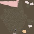 Rat Texture