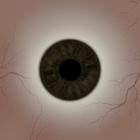 Tanaka Eye