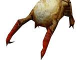 Обыкновенный хедкраб