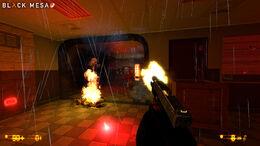 Black Mesa 03