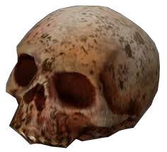 HL2 skull.jpg
