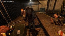 Black Mesa 09