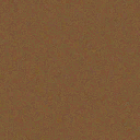 Sand barnacle texture