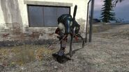 Jäger vs Zombine
