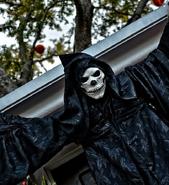 Black Skeletal Stiltwaker 17