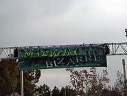 Midway of the Bizarre Sign 2