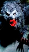Werewolf 1 (An American Werewolf in London)