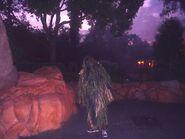 Fire Pits Bush