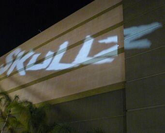 Skullz Sign.jpg