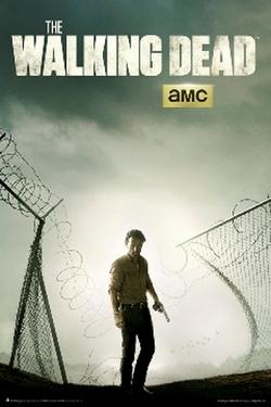 The Walking Dead Tv series poster.webp