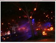 HHN08 Central Park Pumpkins