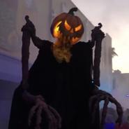 Harvester Pumpkin