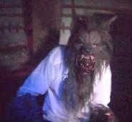 The Wolfman (HHN 29)