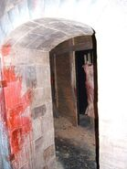 Blood Ruins Room 25