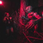 Screenshot 2020-05-24 Halloween Horror Nights ( horrornightsorl) • Instagram photos and videos(45)