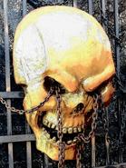 Gold Skull Prop