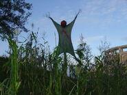 Field of Screams 4