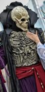 The Bone Reaper 8