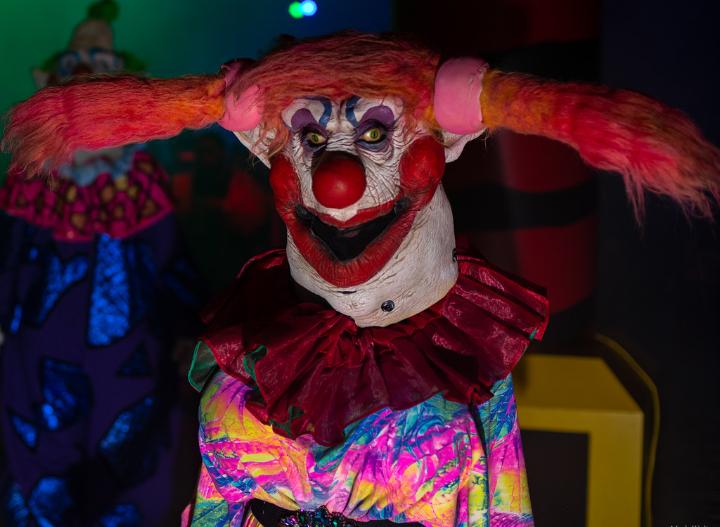 Daisy the Clown Girl