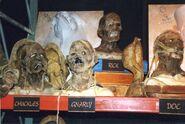 USF mummies