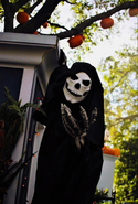 Black Skeletal Stiltwaker 20