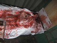 Screamhouse 3 Corpse 2