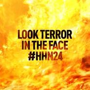 Screenshot 2020-11-14 See you at 11 -HHN24