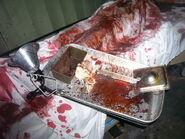 Screamhouse 3 Bloody Things